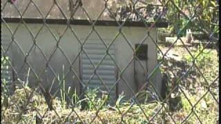 Lartes Castaner Puerto Rico 5