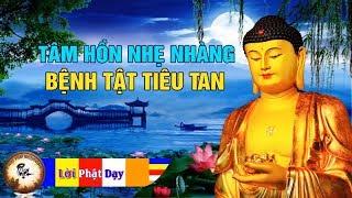 Tâm Hồn Nhẹ Nhàng - Bệnh Tật Tiêu Tan Bởi Lắng Nghe Điều Này Mỗi Tối | Phật Pháp Nhiệm Màu