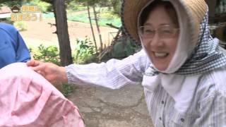 伊那市農家民泊案内DVD.