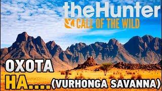 theHunter Call of the Wild # охота на...(Vurhonga Savanna)
