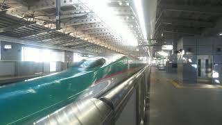 東北新幹線 上り回送 E5系② 2020.01.25