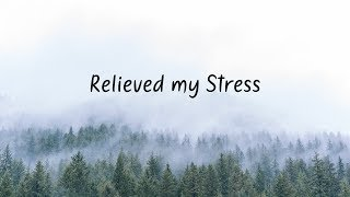 Relieved my Stress Beautiful Chill Mix