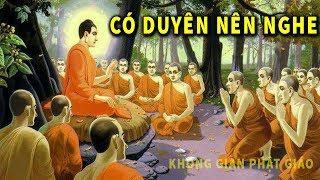Ai Có Duyên Với Phật - Mỗi Tối Hãy Nghe Lời Phật Dạy Này để THAY ĐỔI SỐ PHẬN Tâm Tính Tốt Hơn