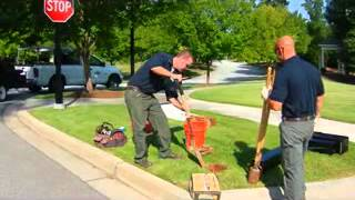How To Install A Decorative Curbside Mailbox And Post