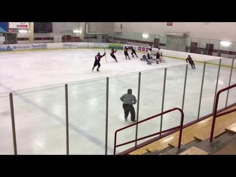 Chris Vo Hockey Highlights 2019-2020
