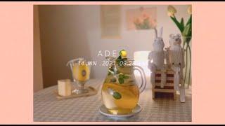 홈카페 vlog _ 천혜향 & 레몬 에이드 만들…