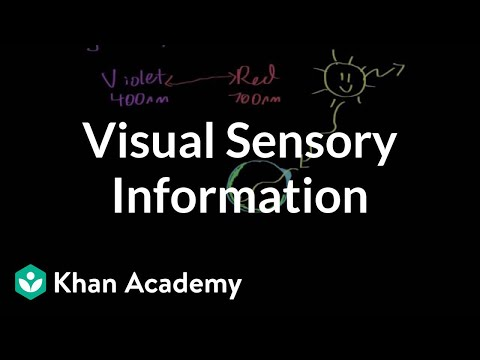 Visual sensory information | Processing the Environment | MCAT | Khan Academy