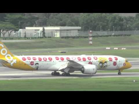 planes spotting at Changi airport