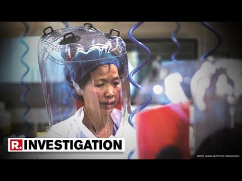 China COVID Truth: Decoding Shi Zhengli's Link To Coronavirus, What Does Wuhan's 'Bat Lady' Know?