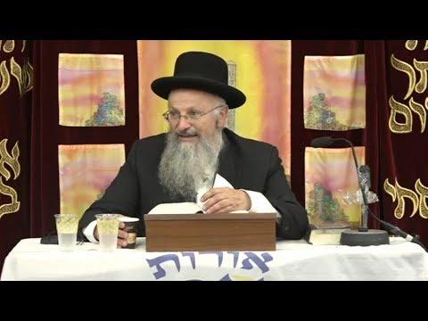 שיעור לפרשת שלח | הרב שמואל אליהו