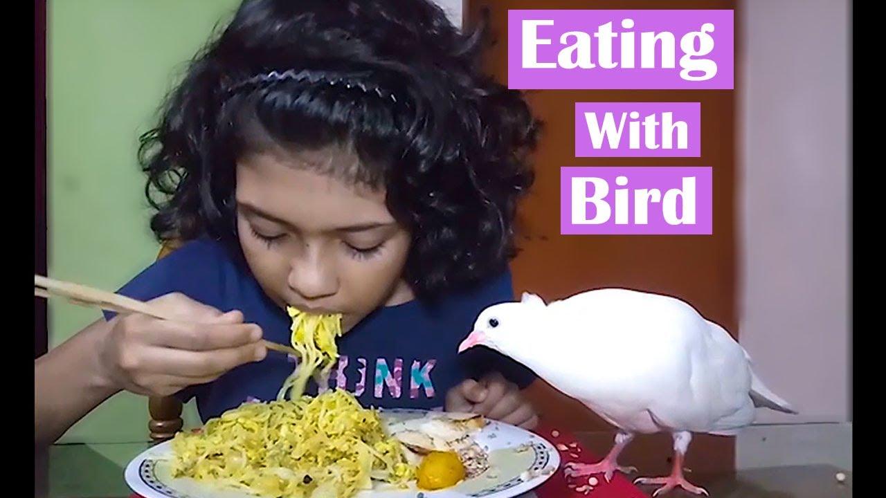 Breakfast With My Baby Bird || Feeding my Bird