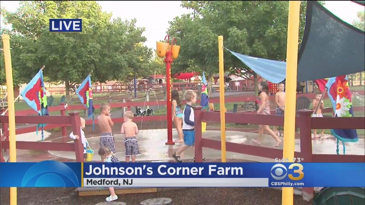 Pay the temperature day at johnson 39 s corner farm in for Johnson s farm nj