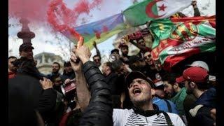 MCA-El Hirak et Omar Ghrib, Un journaliste pleure le Mouloudia d&#39Alger