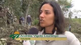 Quadro - Repórter em Campo: Carijo