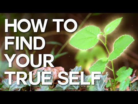 How to Find Your True Self - Swedenborg and Life