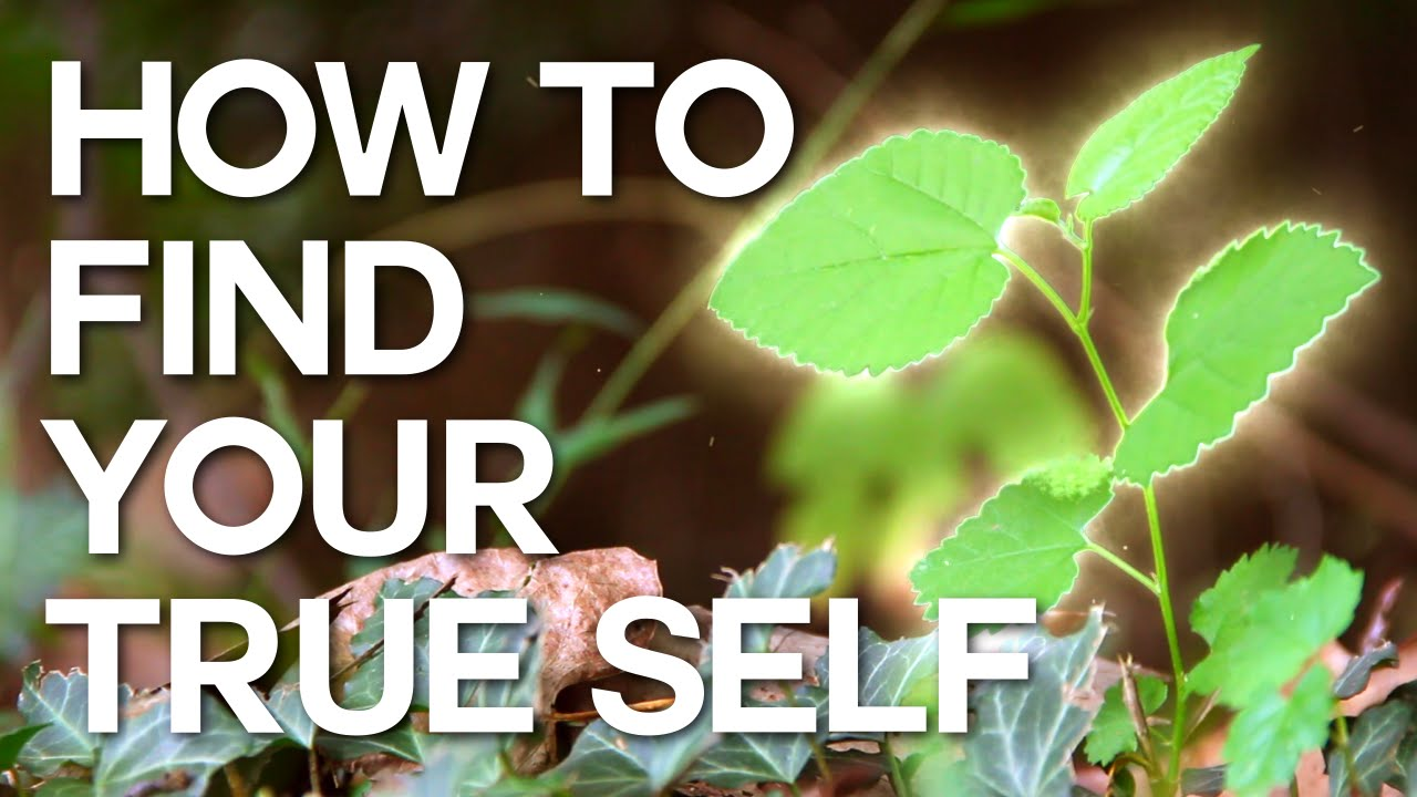 10 Questions That Will Help You Find Out The True Self