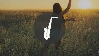 Carly Rae Jepsen Run away with me seal playing saxophone VINE