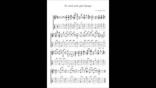 Es wird scho glei dumpa - Guitar / arranged and performed by Yorgos Nousis