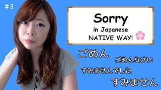 #3 How to say Sorry (Differences) - NATIVE WAY ┃JAPANESE AMMO