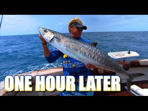 Offshore Fishing for Kingfish, Snapper and Grouper in Key West Florida