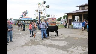 Download Video Wednesday morning at the 2018 Huron Community Fair MP3 3GP MP4