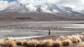 Le Lipez et la route des Joyaux, Bolivie