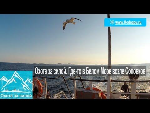 работа возле моря