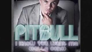 mix bayo pitbull clip photo.wmv