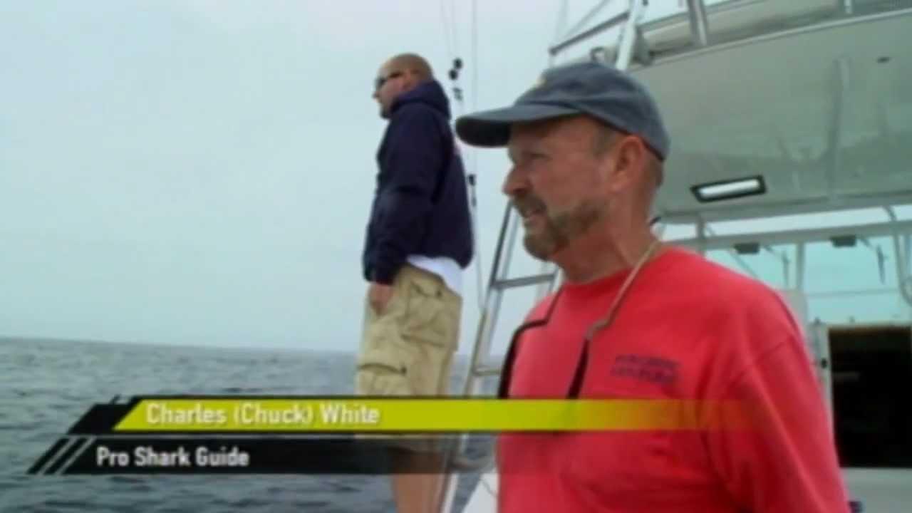 Oceanside ca shark fishing 760 518 5148 youtube for Oceanside fish report
