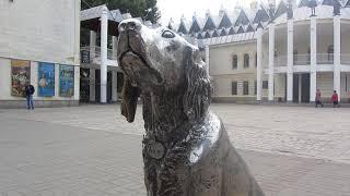 Белый Бим, чёрное ухо*памятник в Воронеже