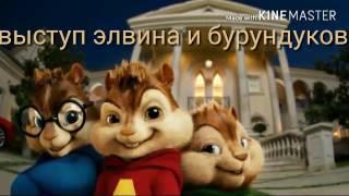 Клип Элвин и бурундуки