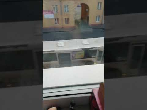 Автобус 115 остановился на Шишкина 12 в прокопьевске