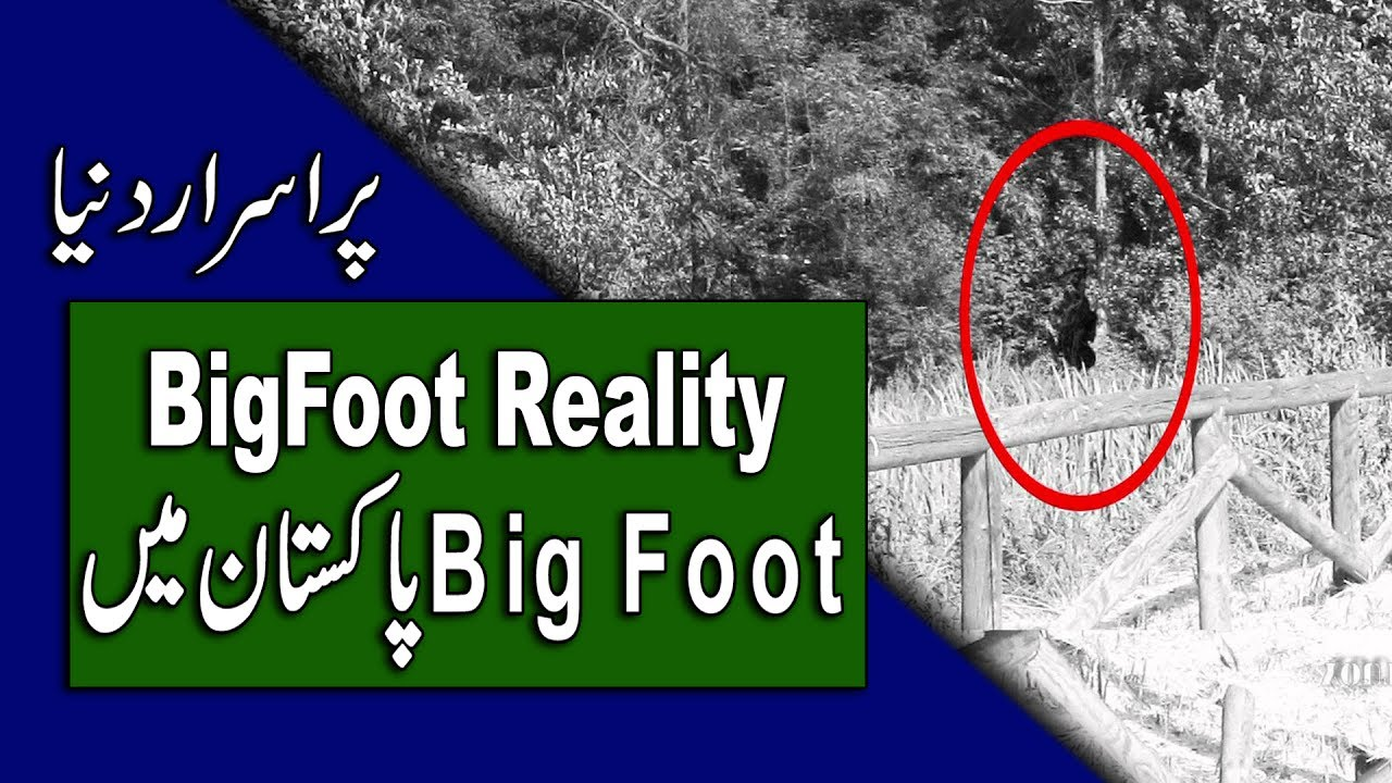 Bigfoot In Urdu - Reality and Proofs - Big Foot in Pakistan - Purisrar  Dunya by Purisrar Dunya