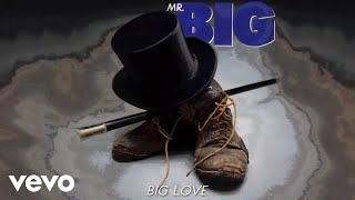 Mr. Big - Big Love (audio)