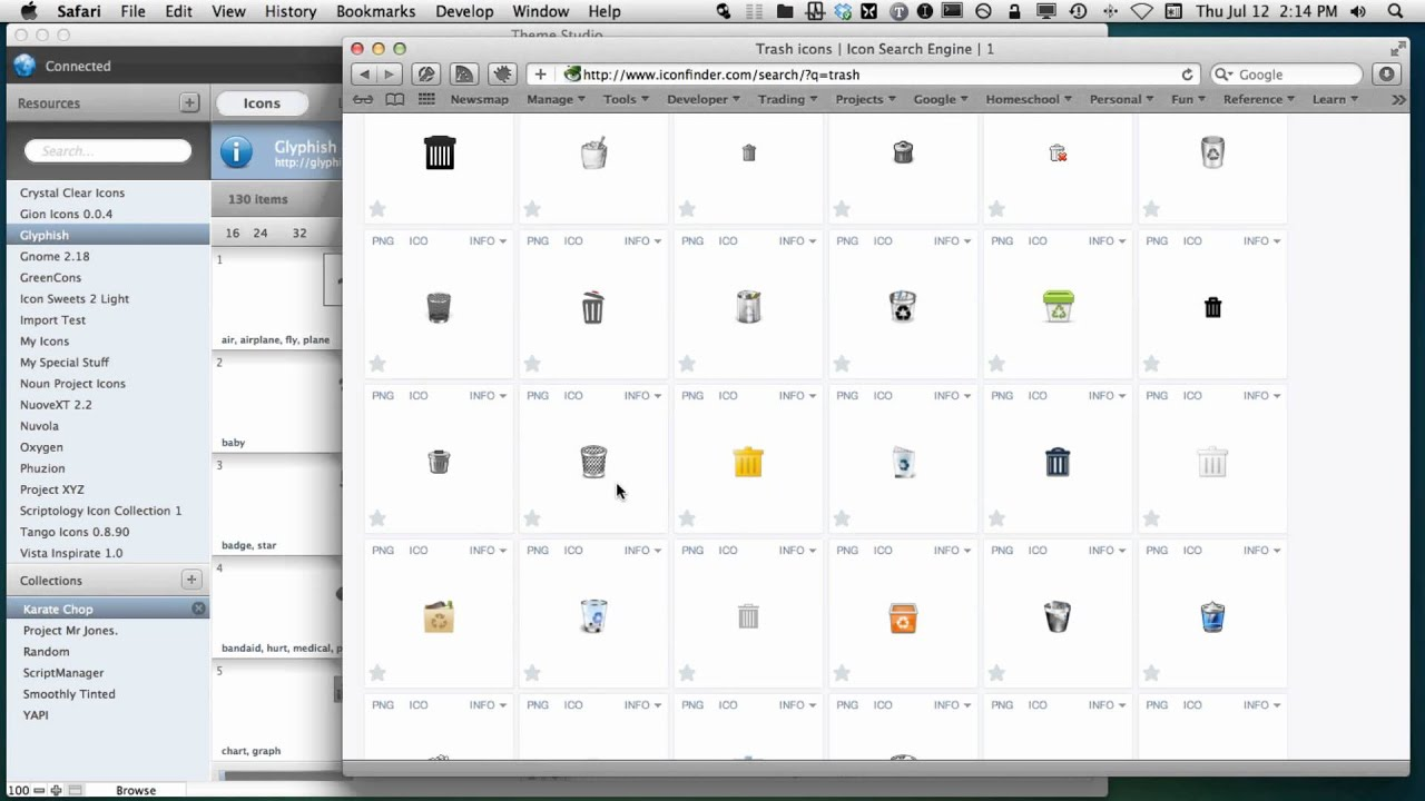 Theme Studio for FileMaker 12 - Internet Icons