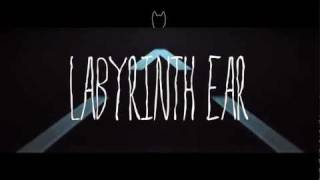 Labyrinth Ear // Humble Bones (Official Video)(PLEASE WATCH IN HD FULL SCREEN OFFICIAL VIDEO FOR LABYRINTH EAR 'HUMBLE BONES' Directed, shot and edited by Brendan Canty of Feel Good ..., 2012-01-18T22:01:32.000Z)