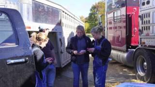 World Dairy Expo 1