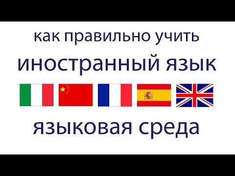 Как выучить язык. Искусственная языковая среда.