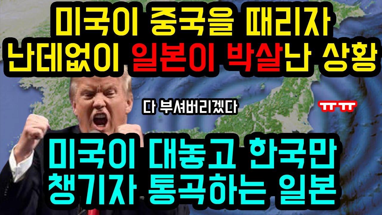 미국이 중국을 때리자 난데없이 일본이 박살난 상황 / 미국이 대놓고 한국만 챙기자 통곡하는 일본 [잡식왕]