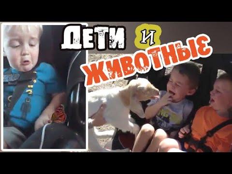 Смешные ДЕТИ и ЖИВОТНЫЕ   Подборка приколов с детьми Реакция детей на животных