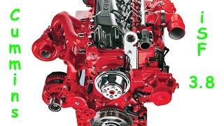 Двигатель Cummins ISF 3.8 - Обзор(ССЫЛКИ: + Instagram: https://instagram.com/diman_sters/ + Моя партнёрка: http://join.air.io/dimansters + ВКонтакте: http://vk.com/dimansters., 2015-10-14T19:43:33.000Z)