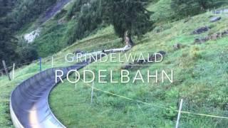 Grindelwald Switzerland Rodelbahn - Travel Vlog