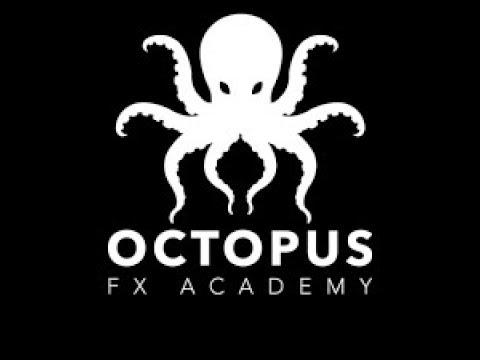 Octopus curso forex mega