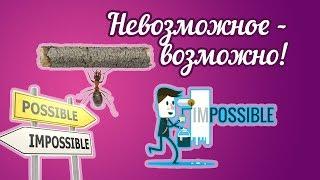 Невозможное - возможно! (метод Лады-Русь, часть 4)