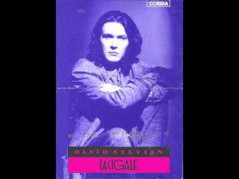 David Sylvian - LIVE IN THEATRE - 1988 ( FULL CONCERT )