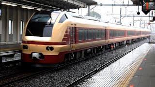 [国鉄特急色でE653再び関東へ]快速花咲くひたち海浜公園号 発車シーン