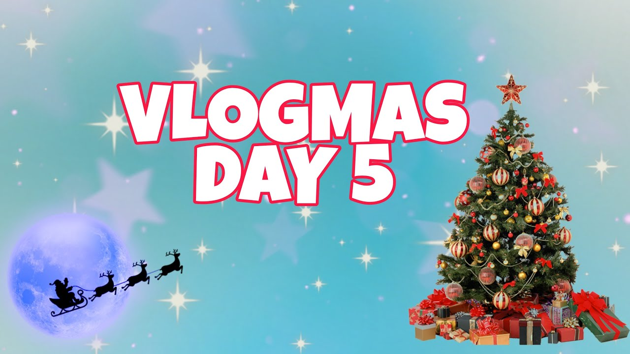 VLOGMAS DAY 5: LET'S BUY KOREAN FOODS | Jelai and Carla Vlogs