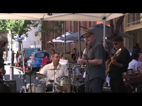 The Harmonics ~ Funky Swinging Rhythm and Blues Band