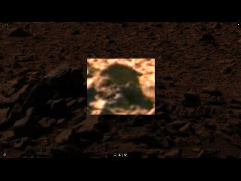 Mars has Life ! : The Man from Mars, Proof of Current Life on Mars