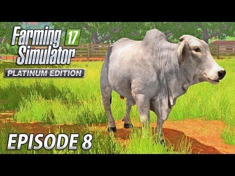 BRAHMAN CATTLE | Farming Simulator 17 Platinum Edition | Estancia Lapacho - Episode 8